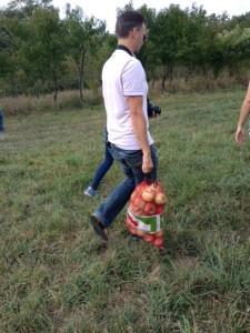 tien kilo appels