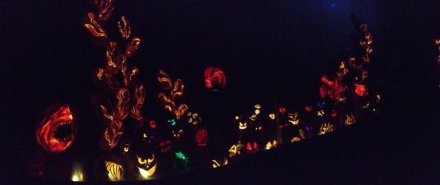pompoenen lichtshow