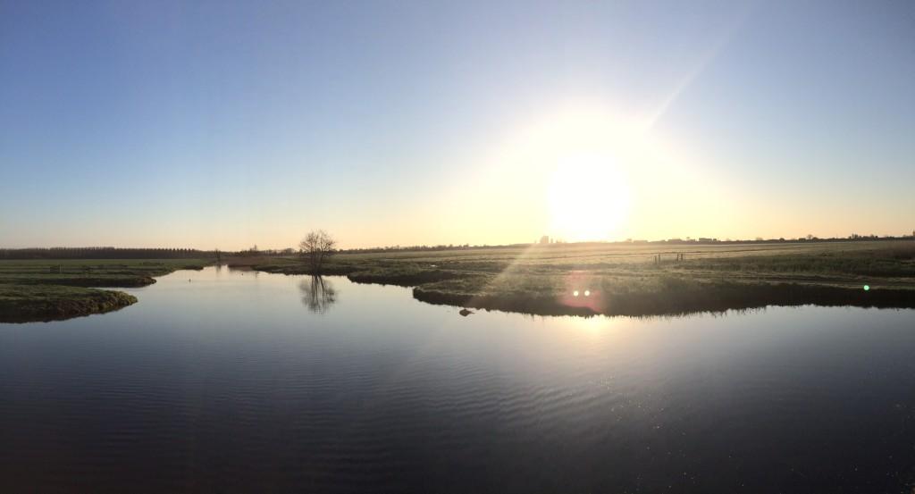 polder in de ochtend
