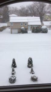 sneeuwvoor